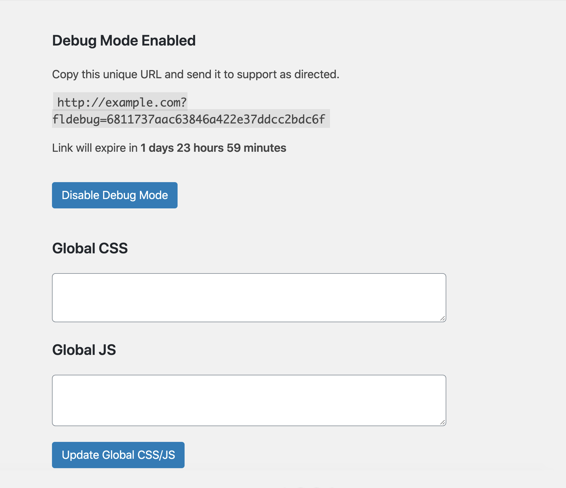 Debug Mode Global CSS/JS
